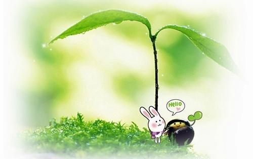小树芽 手绘