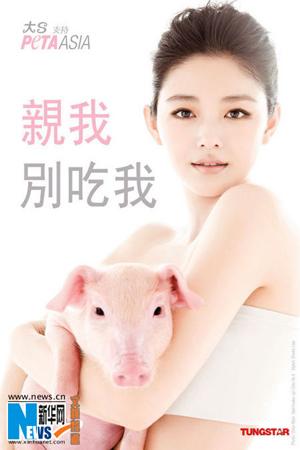 两只姐妹可爱小猪图片