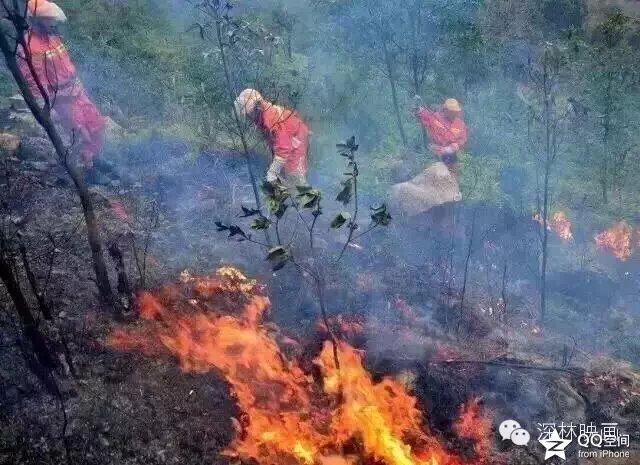 河北省秦皇岛市昌黎县十里铺乡西山场村突发森林大火,附近村民已经