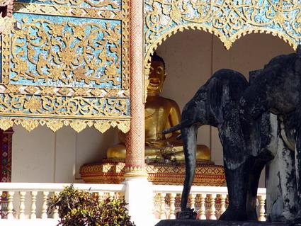 从大象佛塔看大殿的背面
